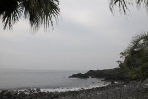 130625伊豆 海洋公園 エントリー口
