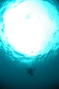 130722伊豆 海洋公園3