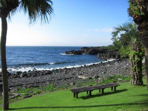 130707伊豆 海洋公園1