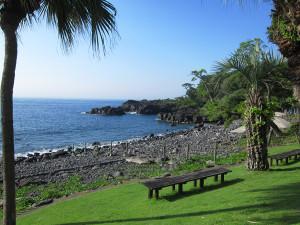 130710伊豆 海洋公園1
