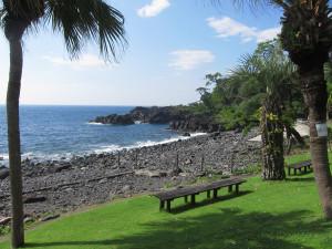 130718伊豆 海洋公園