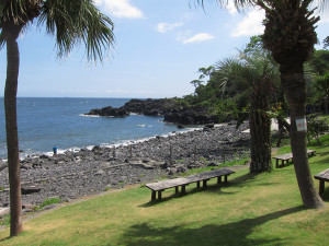 130819伊豆 海洋公園