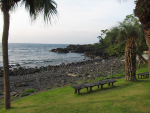 130830伊豆 海洋公園2