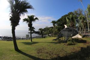 130912伊豆 海洋公園