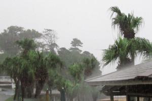 130905伊豆 海洋公園ゲリラ豪雨1