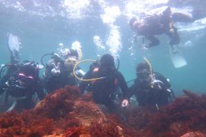 130908伊豆 海洋公園体験ダイビング2