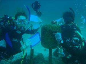 130907伊豆 海洋公園3ポスト