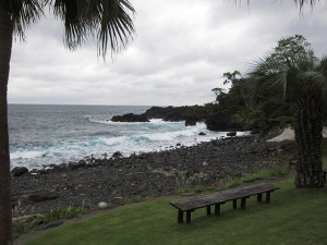 131023伊豆 海洋公園