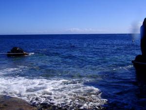 131011伊豆 海洋公園