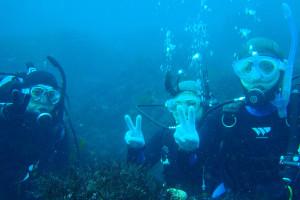 131103伊豆 海洋公園 体験ダイビング