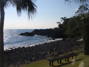 131114伊豆 海洋公園