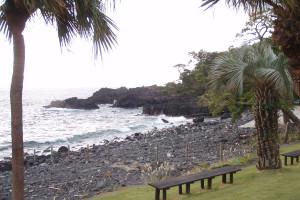 131109伊豆 海洋公園