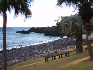 131220伊豆 海洋公園