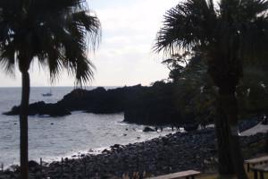 131207伊豆 海洋公園