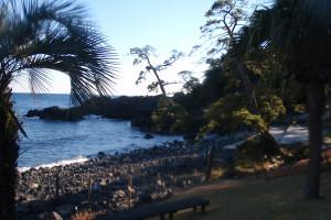 131229伊豆 海洋公園