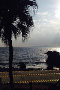 140118伊豆 海洋公園