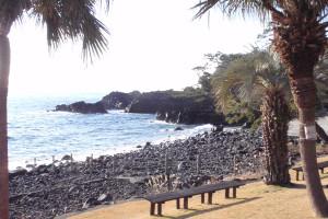 130123伊豆 海洋公園