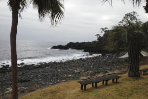 20140218伊豆 海洋公園