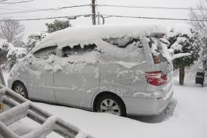 130208伊豆 大雪5