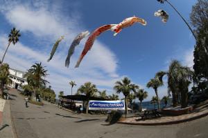 140428伊豆 海洋公園鯉のぼり
