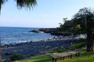140501伊豆 海洋公園