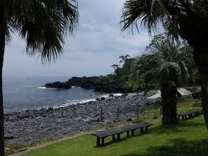 20140624伊豆 海洋公園