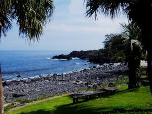 20140626伊豆 海洋公園