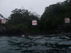 20140622伊豆 海洋公園 海を泳ごう4