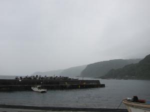 20140605伊豆 赤沢ビーチ