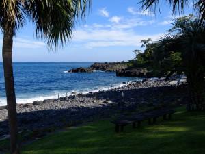 20140711伊豆 海洋公園 台風後2