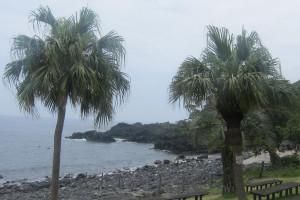 140706伊豆 海洋公園
