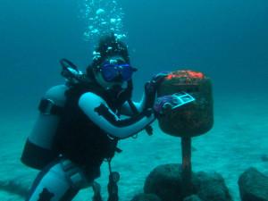 20140713伊豆 海洋公園水中ポスト2
