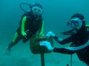 20140823伊豆 海洋公園水中ポスト
