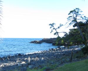 140816伊豆 海洋公園