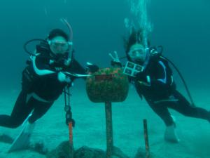 140907伊豆 海洋公園 水中ポスト