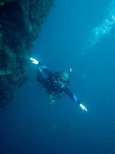 20141018伊豆 ダイビング 伊豆海洋公園1