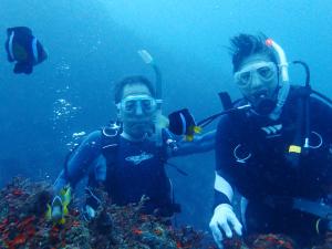 20141001伊豆 ダイビング 伊豆海洋公園ブランクダイバー3
