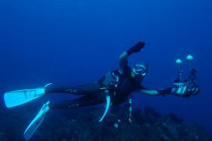 20141113伊豆 ダイビング 伊豆海洋公園一の根2