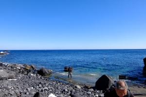 20141113伊豆 ダイビング 伊豆海洋公園2