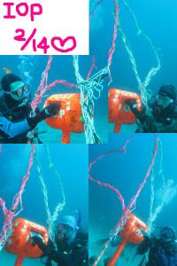 20150214伊豆 ダイビング 海洋公園 水中ポスト