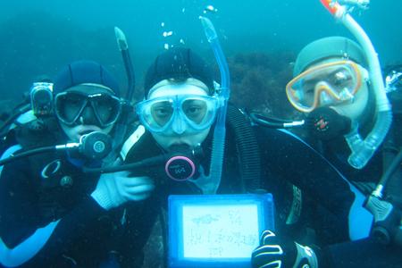 20150504伊豆 体験ダイビング 伊豆海洋公園1