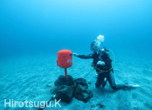 20150514伊豆 ダイビンク 伊豆海洋公園 水中ポスト