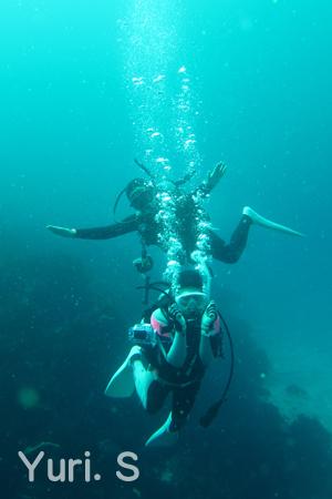 20150502伊豆 ダイビング 伊豆海洋公園ダイバー