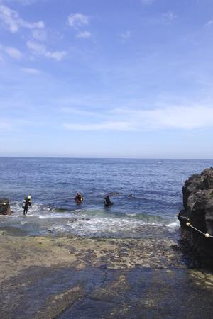 20150503伊豆 ダイビング 伊豆海洋公園