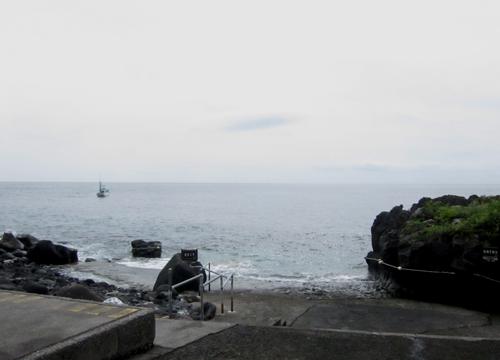 20150608伊豆 ダイビング 伊豆海洋公園