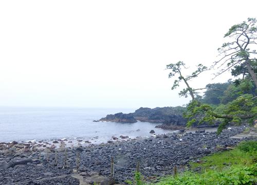 20150616伊豆 ダイビング 伊豆海洋公園