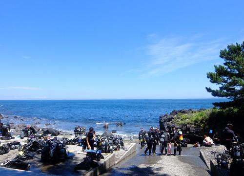 20150720伊豆 ダイビング 伊豆海洋公園 (2)