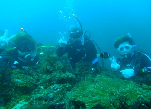 20150721伊豆 ダイビング 伊豆海洋公園 ファミリーダイビング