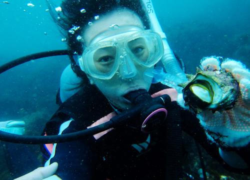 20150819伊豆 体験ダイビング 伊豆海洋公園