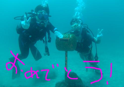 20150803伊豆 ダイビング 伊豆海洋公園 ライセンス取得